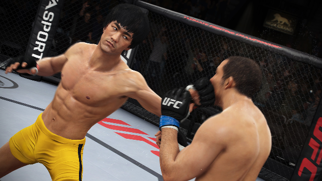 Bruce Lee and UFC - Marriage Made in Heaven?